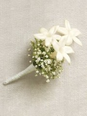 Snow White Stephanotis Buttonhole