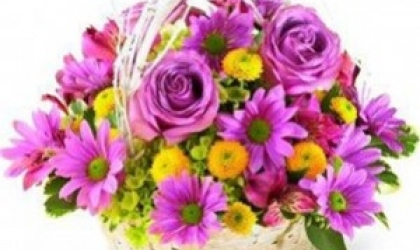 Flower gift ideas for the special occasions